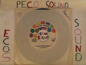 Hud-2 vinyl photos 4508
