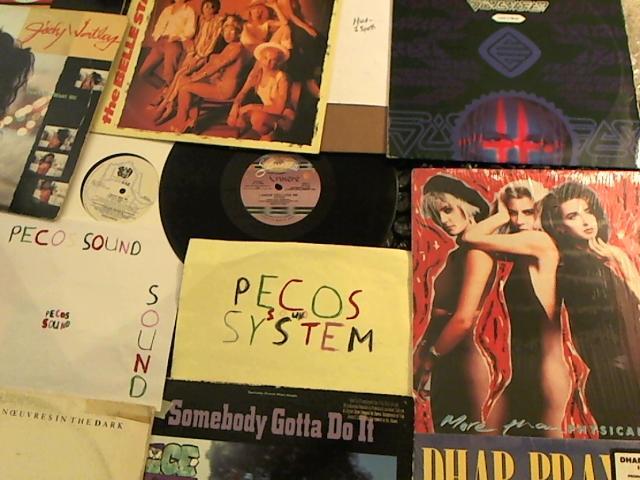 Hud-2 vinyl photos 3996